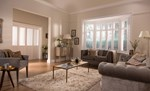 White shutters fitted to a wide window window in a living room that features a sofa, chairs and coffee table