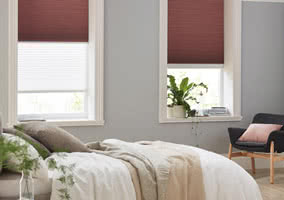 Twin Shade Blinds