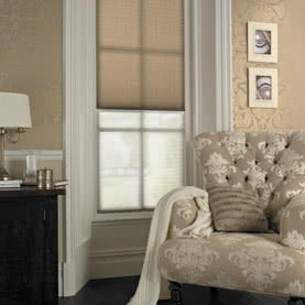 Beige Twin Shade blinds in traditional office